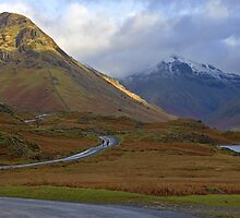 A long way home by Steve plowman