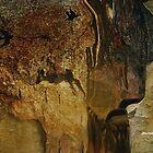 Cave Man Of Peru by Sherri     Nicholas