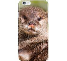 Otter, London Zoo iPhone Case/Skin