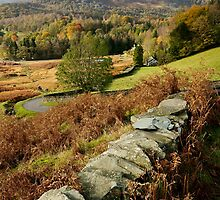 Elterwater Views by English Landscape Prints