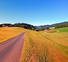 Country road with scenery | landscape photography by Patrick Jobst