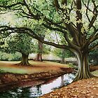 Hornbeam tree, Roath Park by Helen Lush