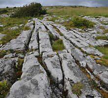 The Burren County Clare Ireland by Sean  Carroll