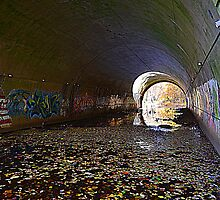 Graffiti in a tunnel by Schoolhouse62