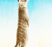 Meerkat Lookout by Lorna Mulligan