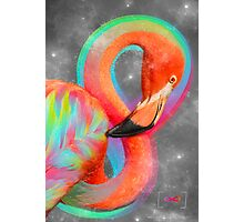 Infinite Possibilities - (Neon Infinity Flamingo) Photographic Print