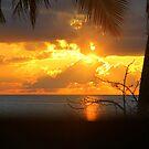 Amazing Sunrise  by vette