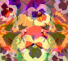 Colourful Pansies by walstraasart