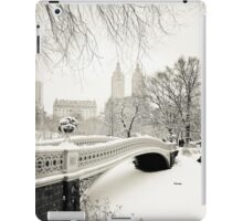Winter - Central Park - Bow Bridge - New York City iPad Case/Skin