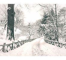 Snowy Path -  Central Park - New York City Photographic Print
