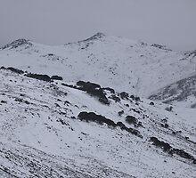 Main Range - Charcoal Mountains by Timothy Kenyon