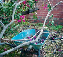 Wheelbarrow  by barrymansfield