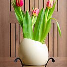 Tulips and easter egg by 7horses