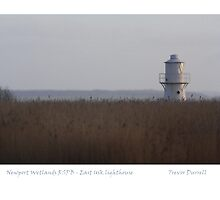 Newport Wetlands RSPB  - East Usk Lighthouse by Trevor Durrell
