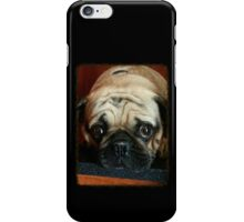 Pug!!!! iPhone Case/Skin