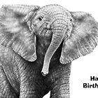 Baby African Elephant Birthday Card by Lorna Mulligan