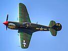 Curtiss P-40M Kittyhawk - Shoreham 2013 by Colin J Williams Photography