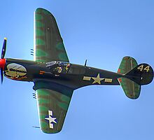 Curtiss P-40M Kittyhawk - Shoreham 2013 by Colin J Williams Photography