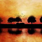 silhouettes in the sunset by Viviana Gonzalez