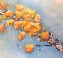 Colour Me Fall by Betty MacRae
