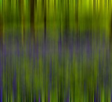 Bluebell Woods - Abstract by English Landscape Prints
