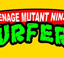 teenage mutant ninja SURFERS by mouseman
