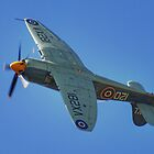 Sea Fury - Shoreham - 2013 by Colin J Williams Photography