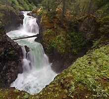 Upper Little Qualicum Falls by Michael Russell