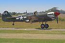 Curtiss P-40M Kittyhawk Touchdown - Shoreham 2013 by Colin J Williams Photography
