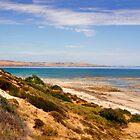 Australian Coastal Landscape by jwwallace