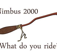 Nimbus 2000 - What do you ride? by icandigdestiel