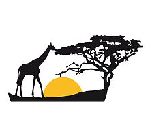 Africa sunset tree giraffe landscape feeding in th by Style-O-Mat