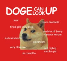 Doge Can Look Up COMIC SANS (Shaun Of The Dead) by jezkemp