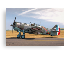 Curtiss Hawk 75-C1 No 82 G-CCVH Canvas Print