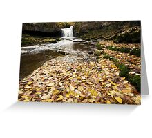 West Burton Waterfall Greeting Card
