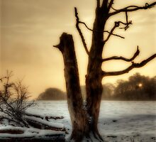 Wintery Times by English Landscape Prints