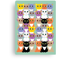 Only A Glaring Of Cats Canvas Print