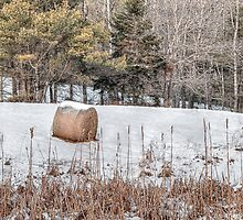 Hay Bale Can't Be Lonely by Richard Bean