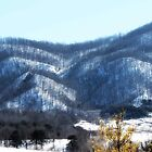 Snow on The Blue Ridge 2 by virginian