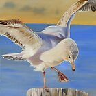 Seagull Ballet by Phyllis Beiser