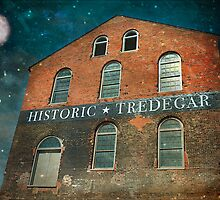 Shooting Stars Over Tredegar by Susan Werby