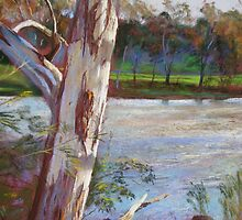Portrait of a River Gum by Lynda Robinson
