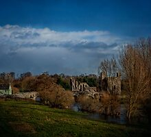 St. John the Baptist priory - Trim, Ireland by EmvandeBee