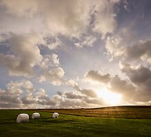 Snæfellsnes Pensinsula Sunset I by Natalie Broome