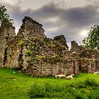 Pendragon Castle by Tom Gomez
