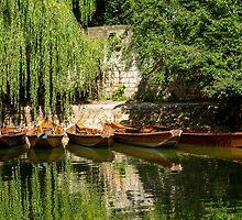 Punts, River Neckar, Tübingen 2 by Mark Bangert