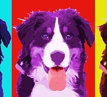 Berner - Warhol Style. by TheJill