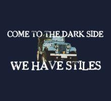 We Have Stiles by jamiesugah