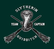 Harry potter Slytherin quidditch team Flag by threesecond