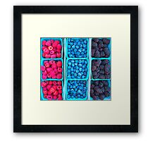 Farm Fresh Berries - Raspberries Blueberries Blackberies Framed Print